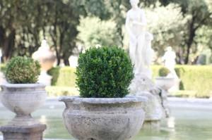 Roma - Villa Borghese - © Thomas Michael GLaw